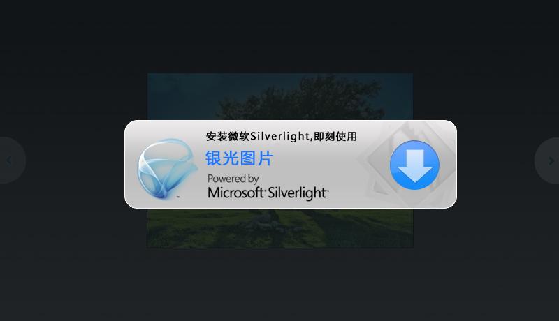 安装微软Silverlight控件,即刻使用帖图浏览功能